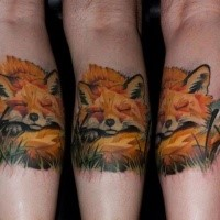 Spectacular illustrative style colored leg tattoo of sleeping fox