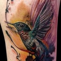 Spektakuläres natürlich aussehendes Kolibri Tattoo am Arm