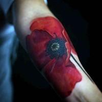 Herrliche 3D realistisch detaillierte natürlich gefärbte große Mohnblume Tattoo am Arm