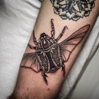 Narbung Stil schwarzes und weißes Bizeps Tattoo mit großem Käfer