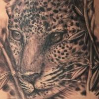 stupendo molto realistico dettagliato nero e bianco leopardo  tatuaggio su vita