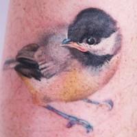 Tatuaggio impressionante 3D l'uccello
