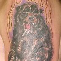 Zornerfüllter Grizzlybär in Flamme