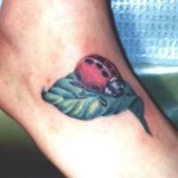 Marienkäfer auf Blatt Tattoo in Farbe