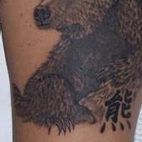 Baby-Braunbär Tattoo
