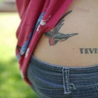 Tatuaggio sulla schiena l'uccello colorato