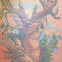 Famiglia dei cervi tatuata