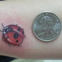 Kleines detailliertes  Marienkäfer Tattoo
