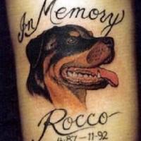 rocco cane memoriale tatuaggio