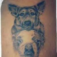Collie and bulldog tattoo