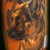 Captain rex portrait tattoo