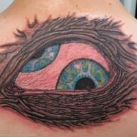 occhi in nido tatuaggio sulla schiena
