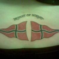 bandiera norvedese su parte bassa della schiena tatuaggio