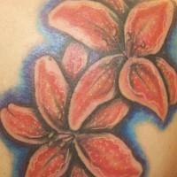 Tatuaggio colorato sulla spalla i gigli rossi