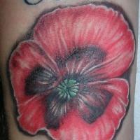 Rote Mohnblume mit Schriften Tattoo am Handgelenk