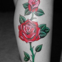 Elegant red rose clessic tattoo