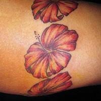 Colorful hibiscus armband tattoo