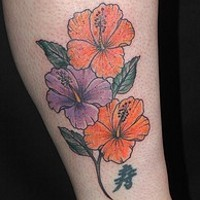 Purple and orange flowers of hibiscus
