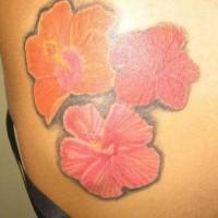 Three flowers of hibiscus tattoo