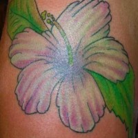 Soft pink hibiscus tattoo