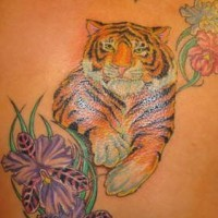 Hibiscus flowers with realistic tiger coloured tattoo