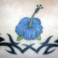 Blue hibiscus flower with tribal tracery
