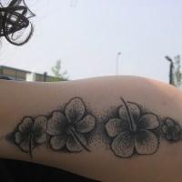 Hibiscus flowers black ink tattoo
