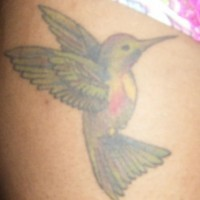 Lime green hummingbird tattoo