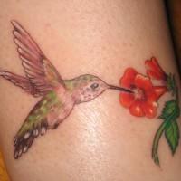 Hummingbird eating flower nectar tattoo