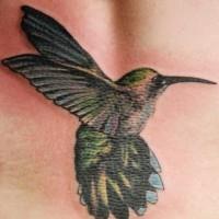 Green hummingbird flight tattoo