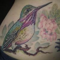 Realistic hummingbird on sakura tattoo