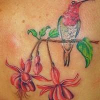 Hummingbird on exotic tree tattoo