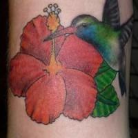 Hummingbird on red flower tattoo