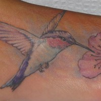 Realistic hummingbird with pink flower