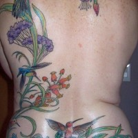 Flowers and hummingbirds full back tattoo