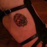 Tattoo mit Marienkäfer am Fuß