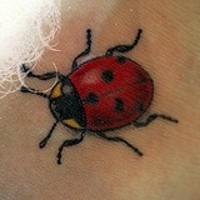 Realistischer farbiger Marienkäfer Tattoo