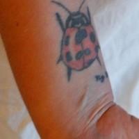 Großer  Marienkäfer Tattoo am Handgelenk