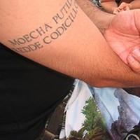 Moecha putida redde codicillos tattoo