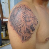 Roaring lion head tattoo on shoulder