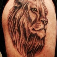 Lion head black ink tattoo on shoulder