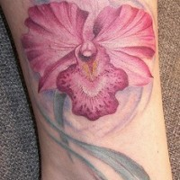 Tender pink orchid flower tattoo