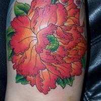 Highly detailed orchid flower tattoo in colour