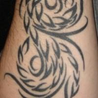 Fenice tribale simbolo tatuaggio sul braccio