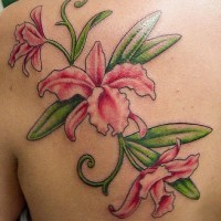 Tender pink orchid flowers tattoo
