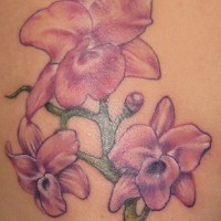 Pale pink orchid flower tattoo