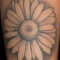 Simple daisy black tattoo