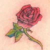 Red rose flower tattoo