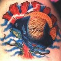 Full of colors tattoo with fish and corals