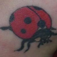 Tattoo von Marienkäfer